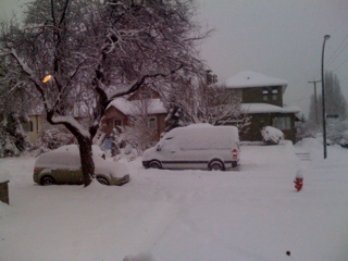 Snowmageddon 2008
